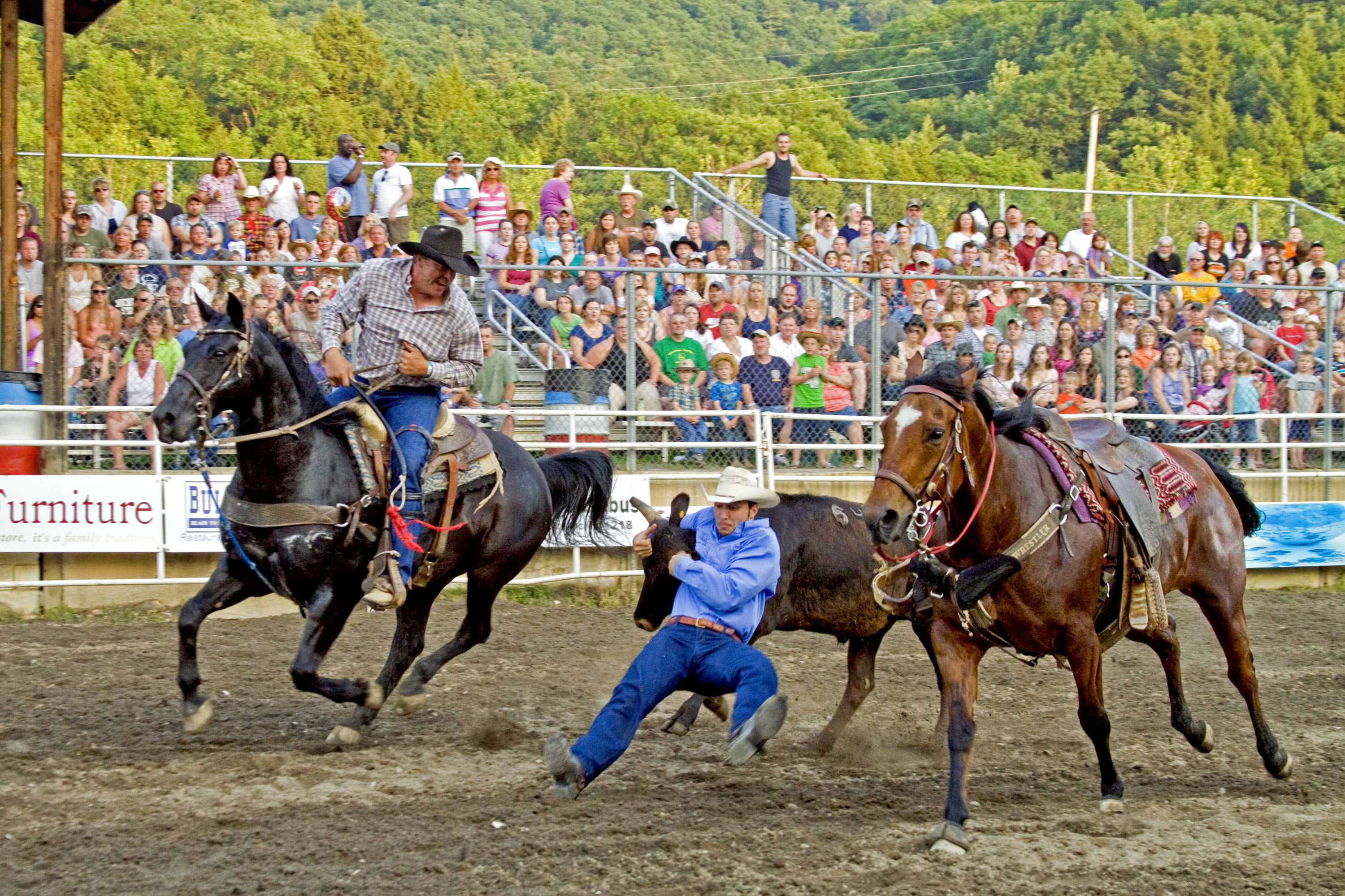 Volunteering 15th Annual Central Pa Rodeo